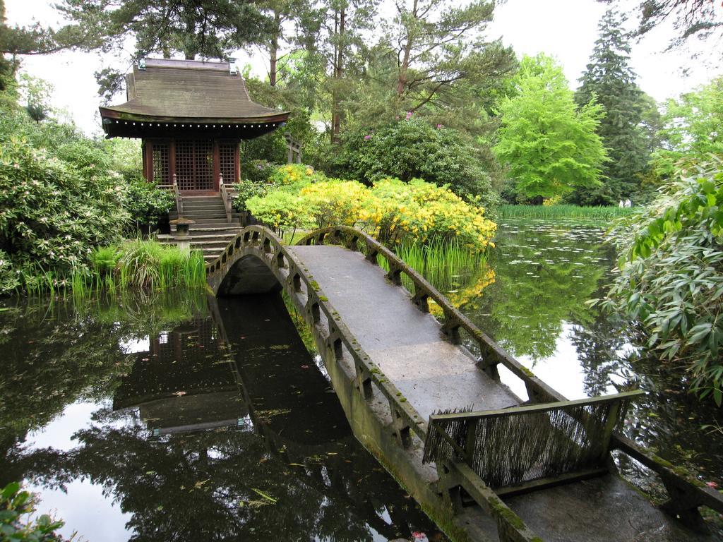 serene spaces